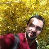 alighaedi2012