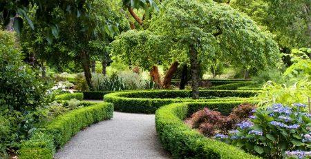 عناصر فضای سبز