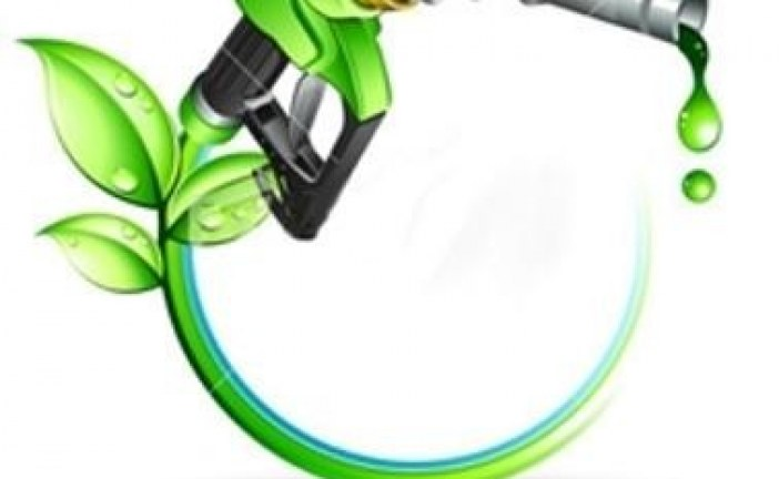 آغاز طرح تولید سوخت های زیستی