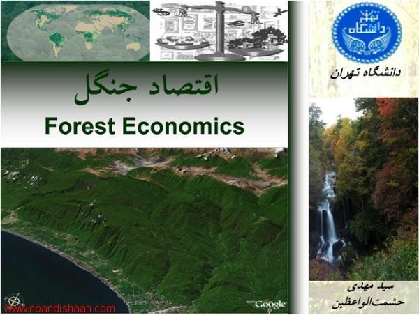 اقتصاد جنگل