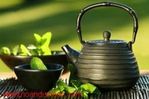 مراحل فرآوری و تولید چای