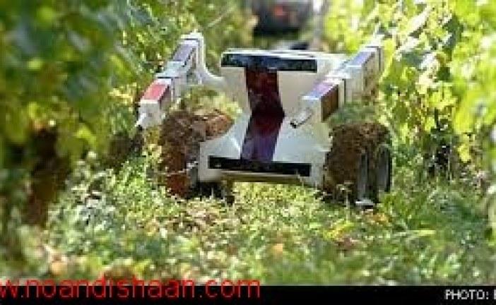 رباتهای وجین کن برای کارهای کشاورزی