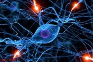 کاربرد شبکه های عصبی مصنوعی در مدلسازی عملیات جدایش