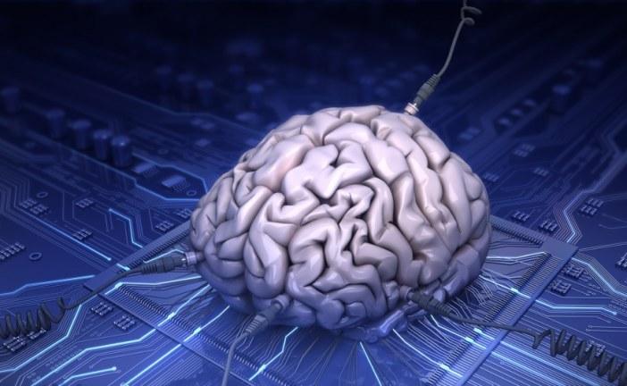 تلاش برای ساخت مغز مصنوعی