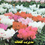 جلد اولکتاب مدیریت گلخانه
