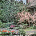 کتاب طراحی مصور باغ و پارک