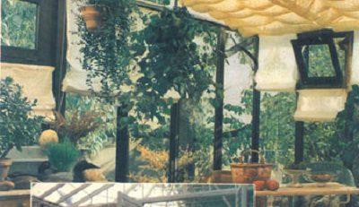 کتاب گیاهان آپارتمانی