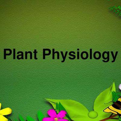 جزوه مبانی فیزیولوژی گیاهی